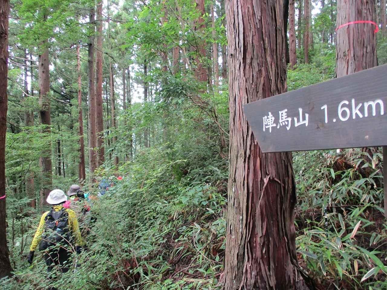 画像3: 7月13日に岡田ガイドの現地集合コースで、 陣馬山 へ行ってきました♪