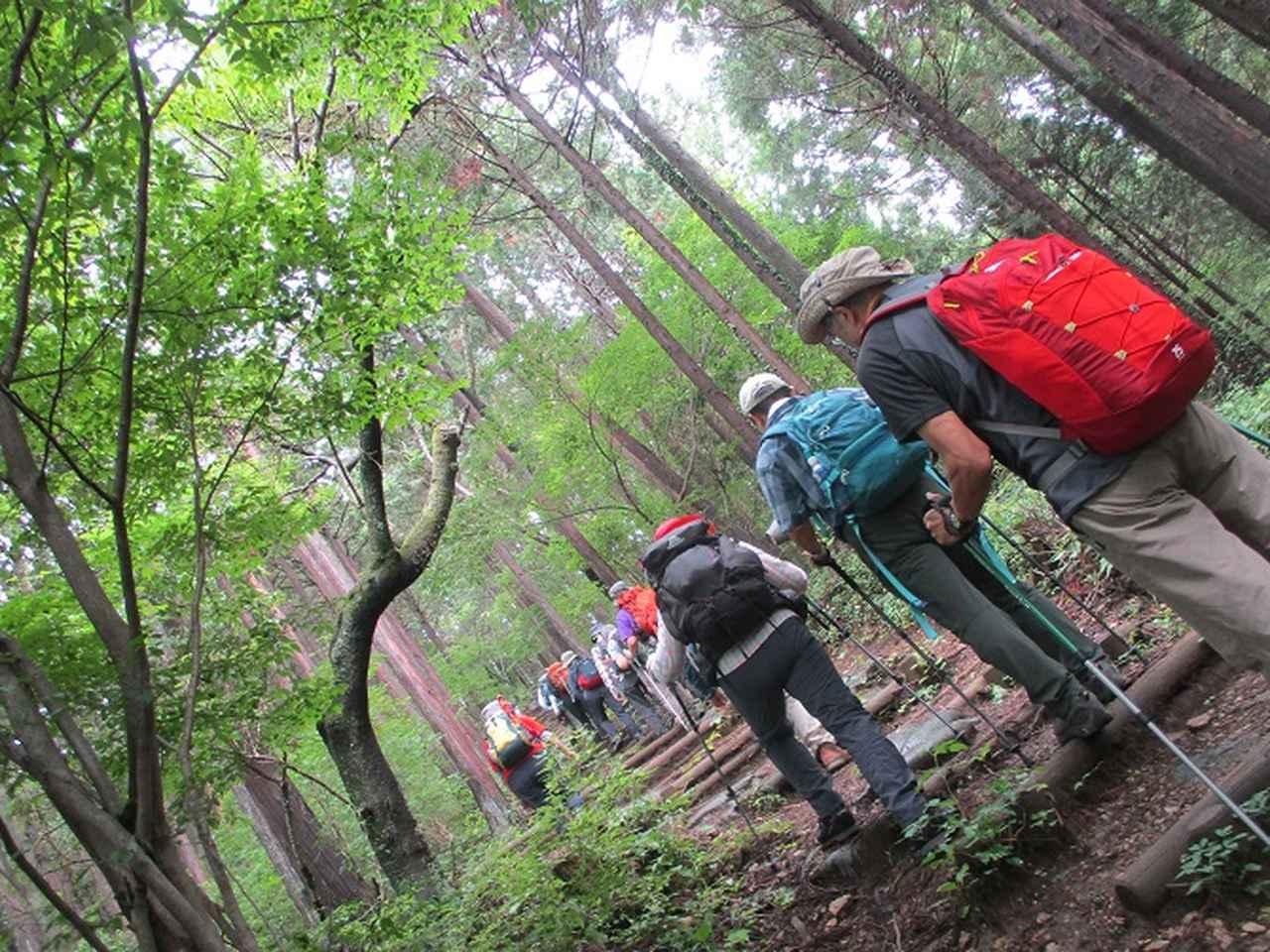 画像7: 7月13日に岡田ガイドの現地集合コースで、 陣馬山 へ行ってきました♪