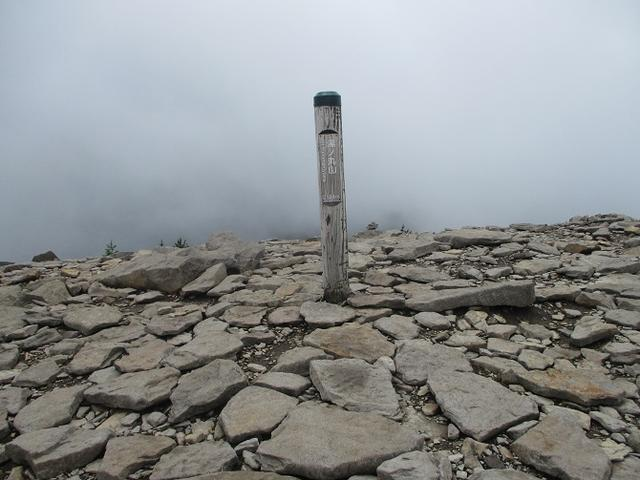 画像15: 7月19日に山旅会 「湯ノ丸山」 ツアーに行ってきました!