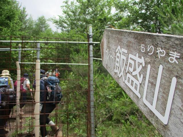 画像4: お花満喫の 飯盛山 にいってきました♪