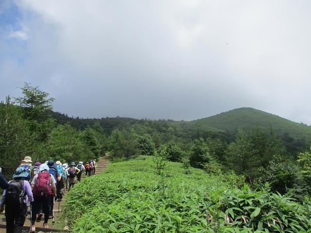 画像6: お花満喫の 飯盛山 にいってきました♪