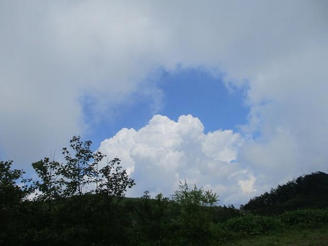画像11: お花満喫の 飯盛山 にいってきました♪