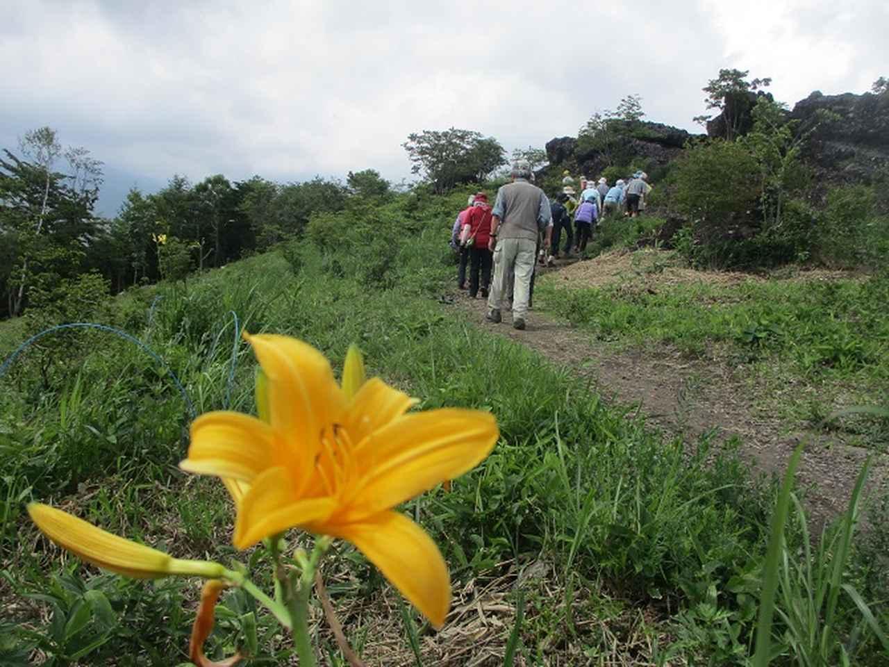 画像17: お花満喫の 飯盛山 にいってきました♪