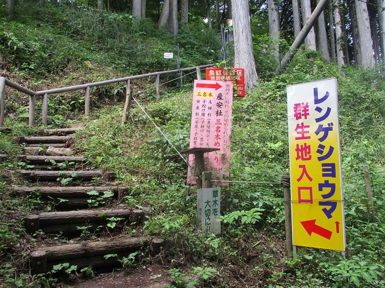 画像2: 8月の山旅会 「日の出山」 ツアーの下見に行ってきました!
