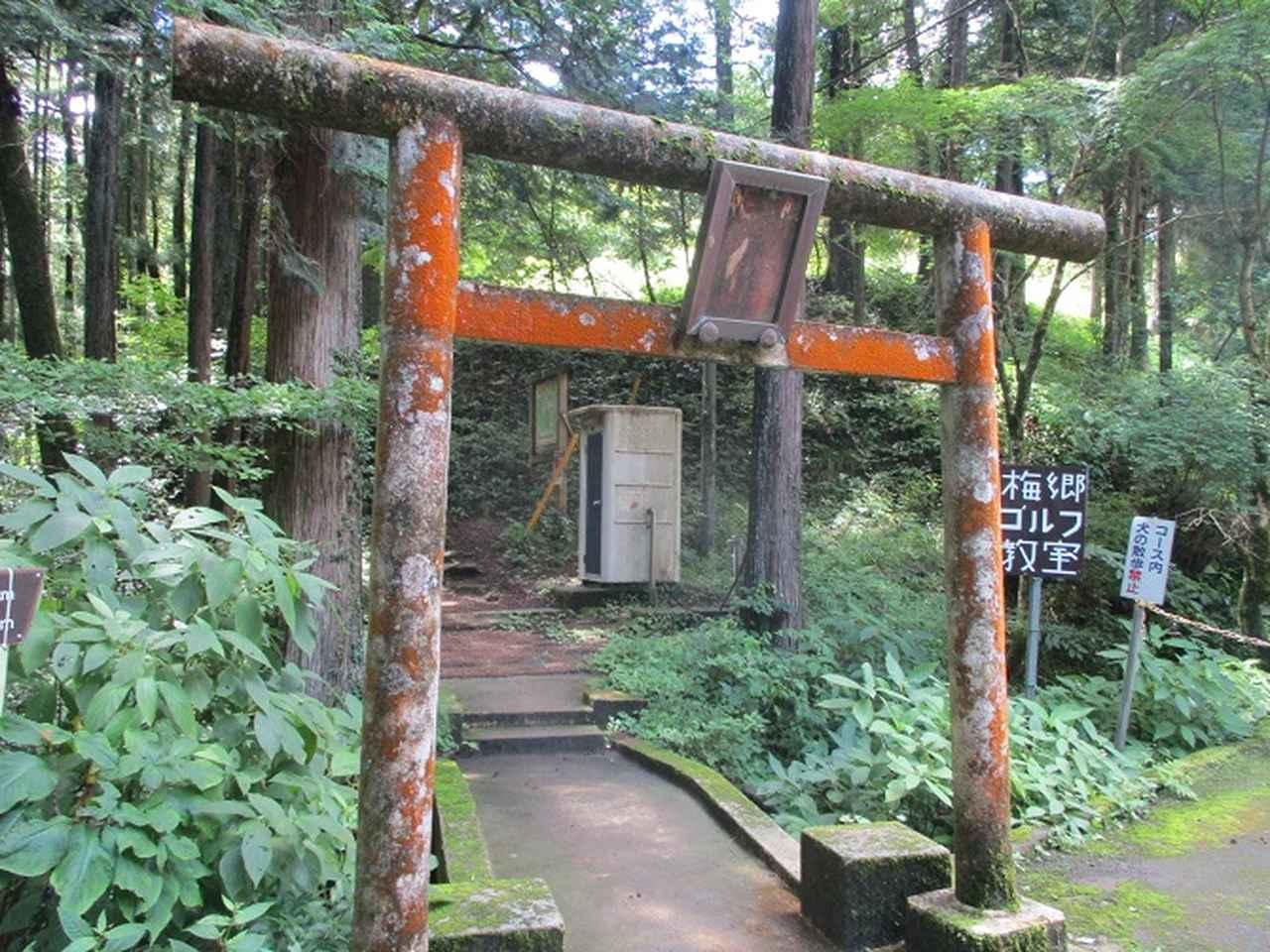 画像12: 8月の山旅会 「日の出山」 ツアーの下見に行ってきました!