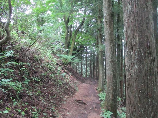 画像4: 8月の山旅会 「日の出山」 ツアーの下見に行ってきました!
