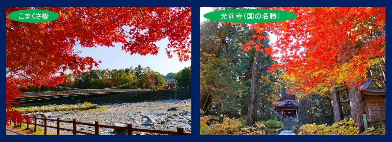 画像: 左:こまくさ橋…長さ146mの太田切川にかかる吊り橋です。この橋から眺める南アルプスの山並みは絶景です!ツアーではこの吊り橋を渡ります。 右:光前寺…国も名勝にも指定されている風光明媚なお寺。境内を赤や黄の紅葉が彩ります。 参道には苔が生えており、石の隙間から光苔が見られることもあります!ぜひ探してみてください!