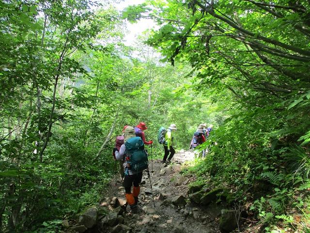 画像13: 7月29日から3日間 「白山」 ツアーに行ってきました!