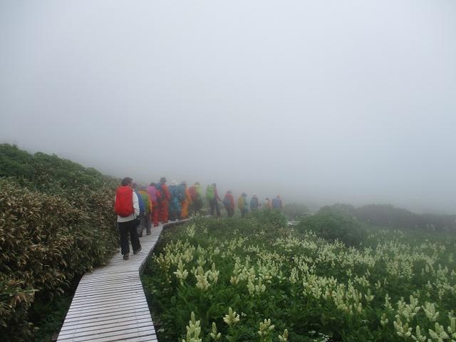 画像7: 7月29日から3日間 「白山」 ツアーに行ってきました!