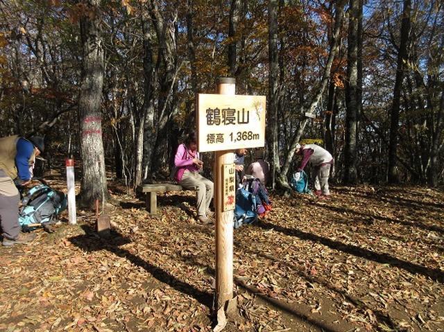 画像13: 少し早いですが10月の 「大菩薩嶺から牛ノ寝通り」 ツアーのご案内です!