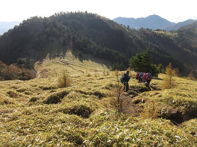 画像7: 少し早いですが10月の 「大菩薩嶺から牛ノ寝通り」 ツアーのご案内です!