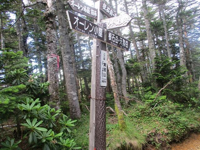 画像6: 【山旅会・登山ガイドこだわりツアー】岡田ガイドからの便り・硫黄岳ツアーに行ってきました!(1日目)
