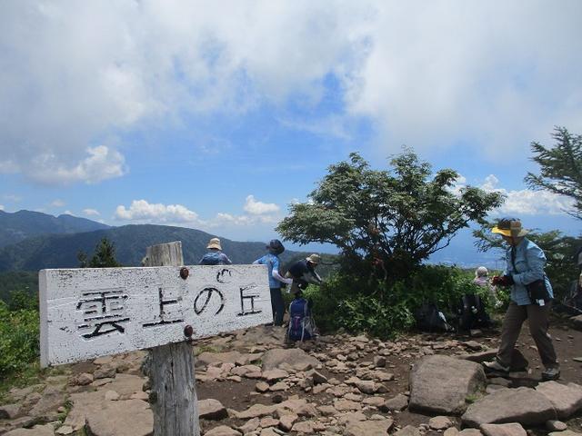 画像7: 8月7日に岡田ガイドのハイキングコースで池の平湿原へいってきました♪