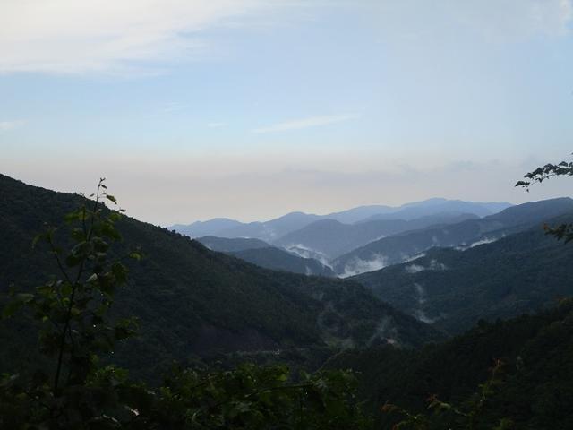 画像14: 8月8日に岡田ガイドのコースで東京都と山梨県にまたがる日本300名山・山梨100名山の 三頭山 へ行ってきました♪