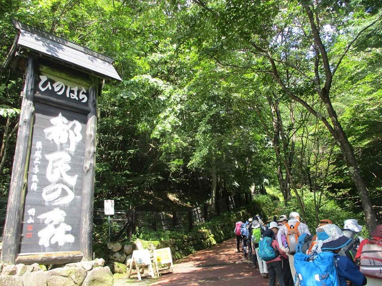 画像1: 8月8日に岡田ガイドのコースで東京都と山梨県にまたがる日本300名山・山梨100名山の 三頭山 へ行ってきました♪