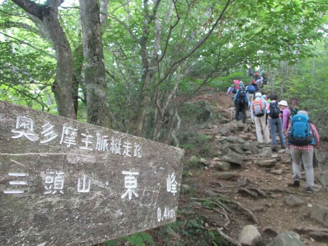 画像10: 8月8日に岡田ガイドのコースで東京都と山梨県にまたがる日本300名山・山梨100名山の 三頭山 へ行ってきました♪