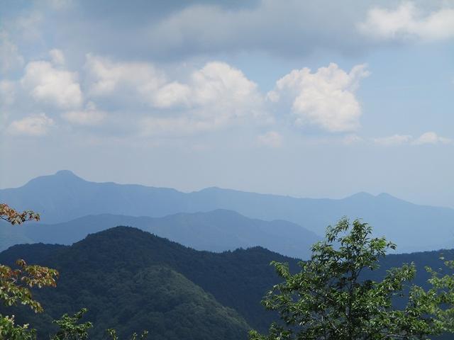 画像7: 8月8日に岡田ガイドのコースで東京都と山梨県にまたがる日本300名山・山梨100名山の 三頭山 へ行ってきました♪