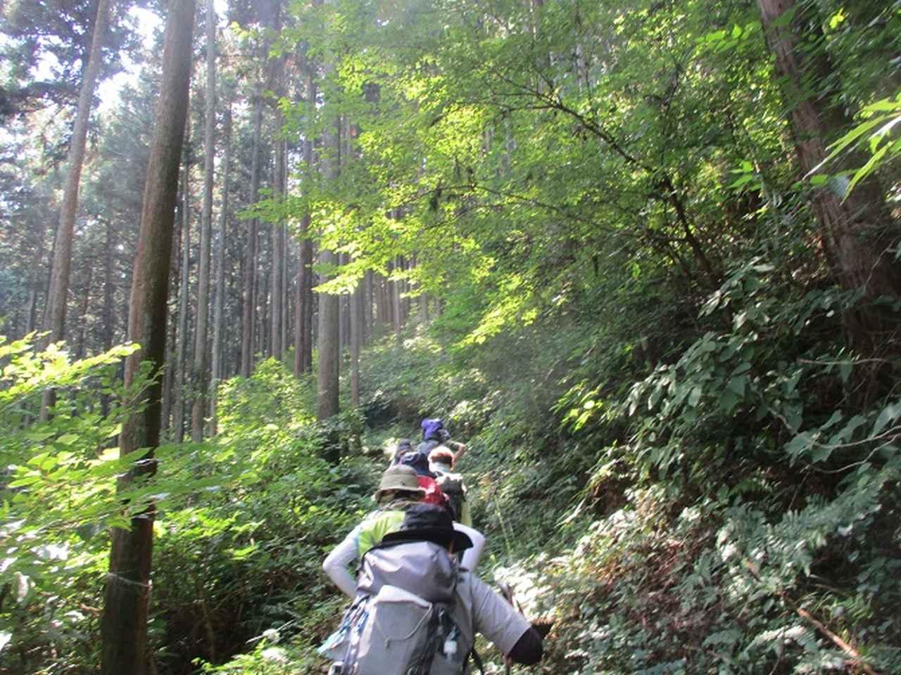 画像1: 8月10日に岡田ガイドの山旅会現地集合 「大塚山」 へ行ってきました!