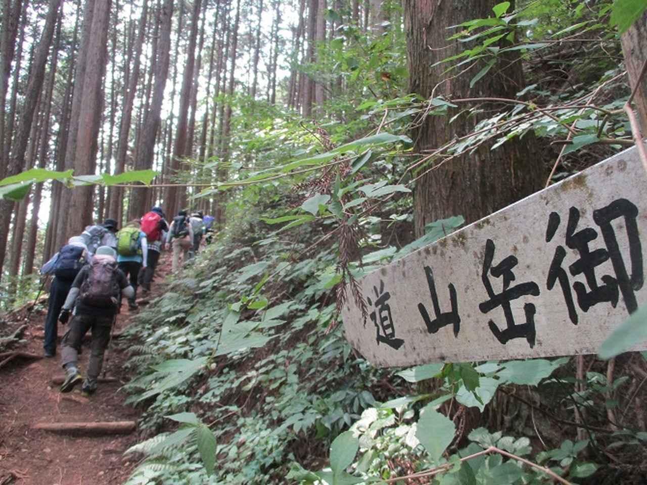 画像3: 8月10日に岡田ガイドの山旅会現地集合 「大塚山」 へ行ってきました!