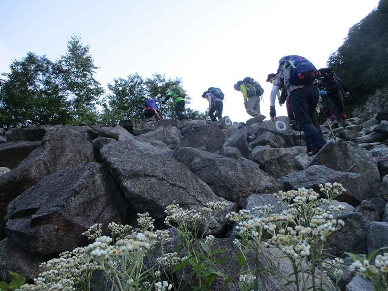 画像4: 8月13日から岡田ガイドのコースで 「ゆっくり歩く鏡平と弓折岳」 に行ってきました!