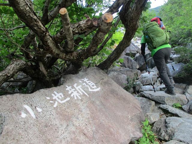 画像5: 8月13日から岡田ガイドのコースで 「ゆっくり歩く鏡平と弓折岳」 に行ってきました!