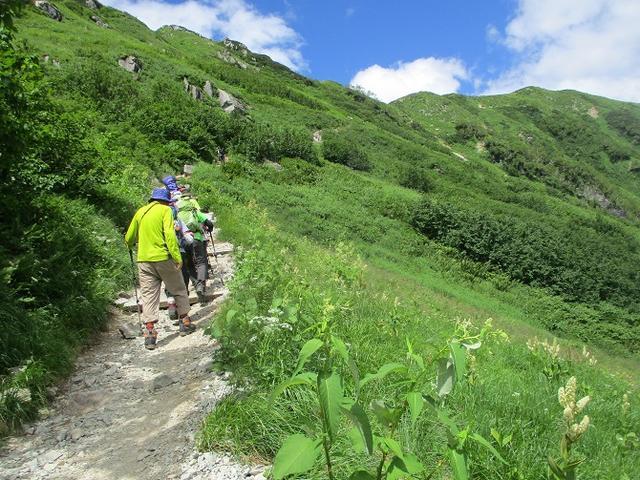 画像13: 8月13日から岡田ガイドのコースで 「ゆっくり歩く鏡平と弓折岳」 に行ってきました!