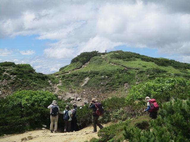 画像7: 8月13日から岡田ガイドのコースで 「ゆっくり歩く鏡平と弓折岳」 に行ってきました!