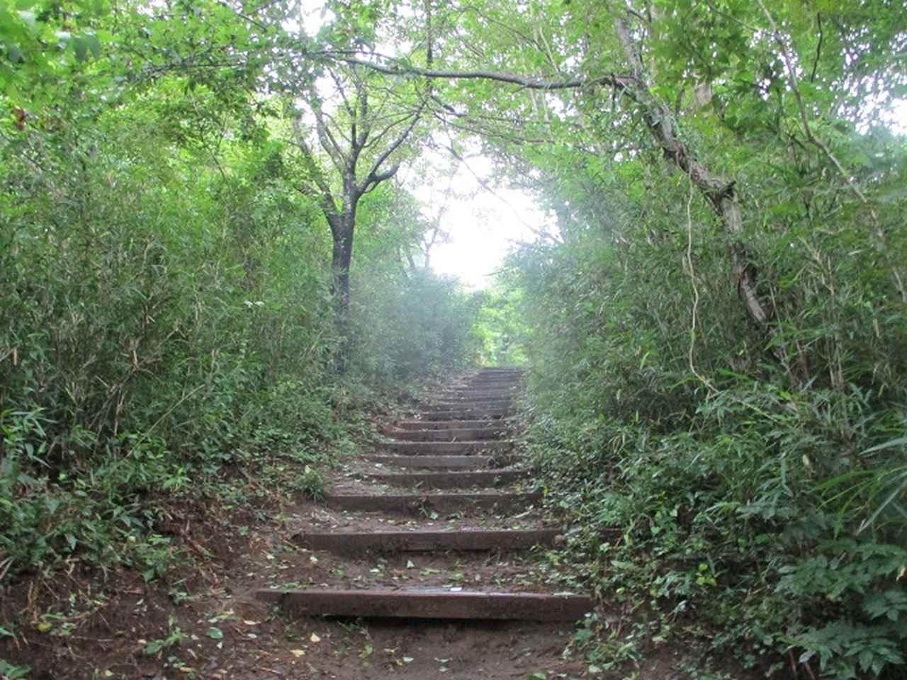画像3: 9月の山旅会現地集合 「城山から景信山」 ツアーの下見に行ってきました!