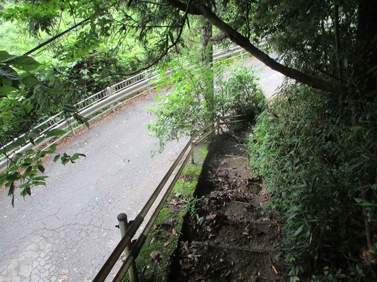 画像10: 9月の山旅会現地集合 「城山から景信山」 ツアーの下見に行ってきました!