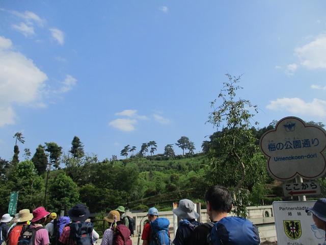 画像13: 8月17日に岡田ガイドの山旅会現地集合ツアーで、奥多摩の 日の出山 に行ってきました♪