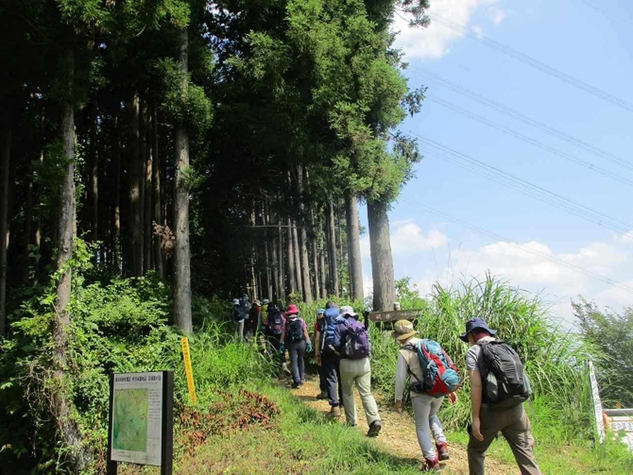 画像10: 8月17日に岡田ガイドの山旅会現地集合ツアーで、奥多摩の 日の出山 に行ってきました♪