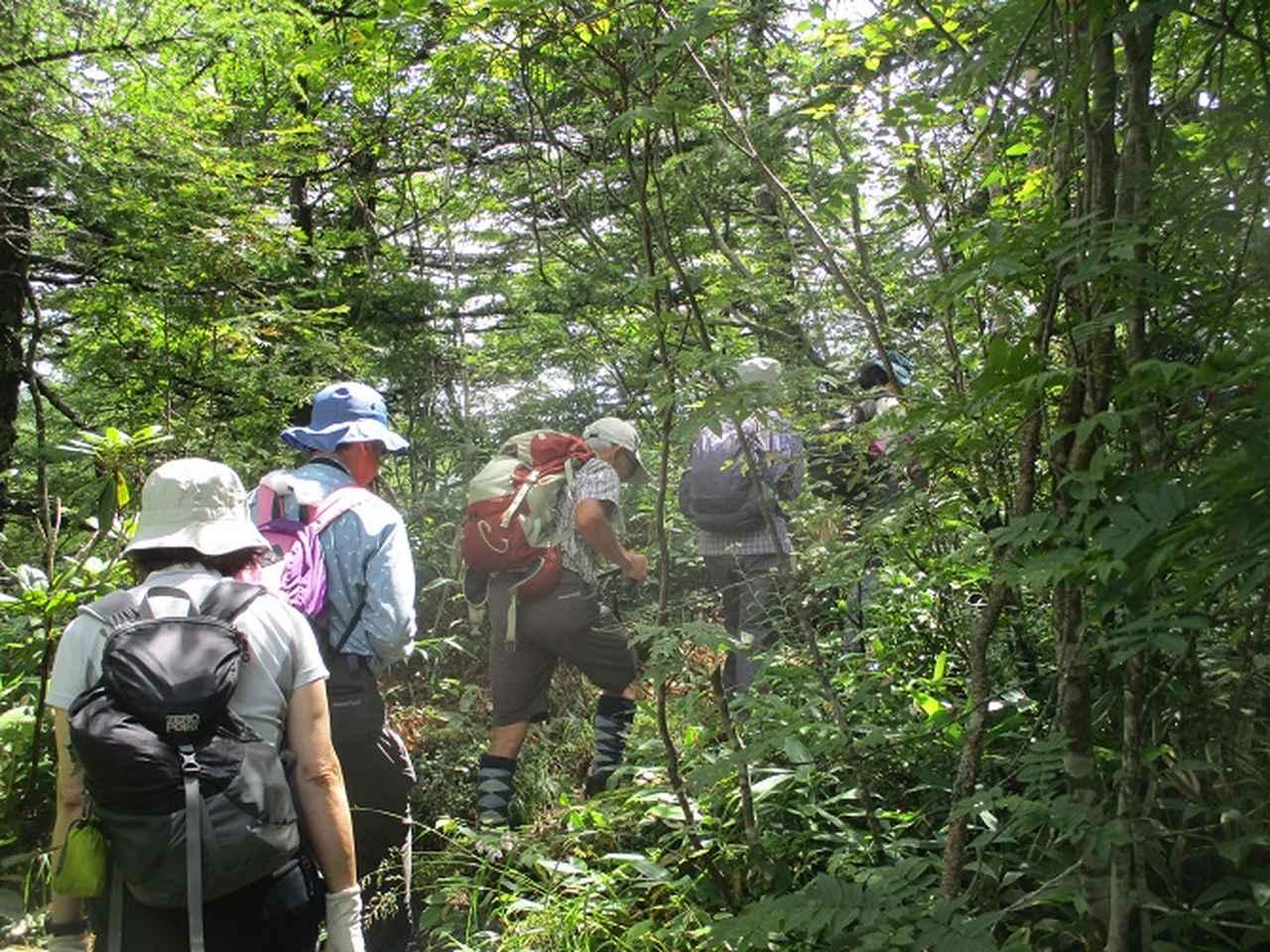 画像1: 8月23日に山旅会 「高峰山」 ツアーにいってきました!