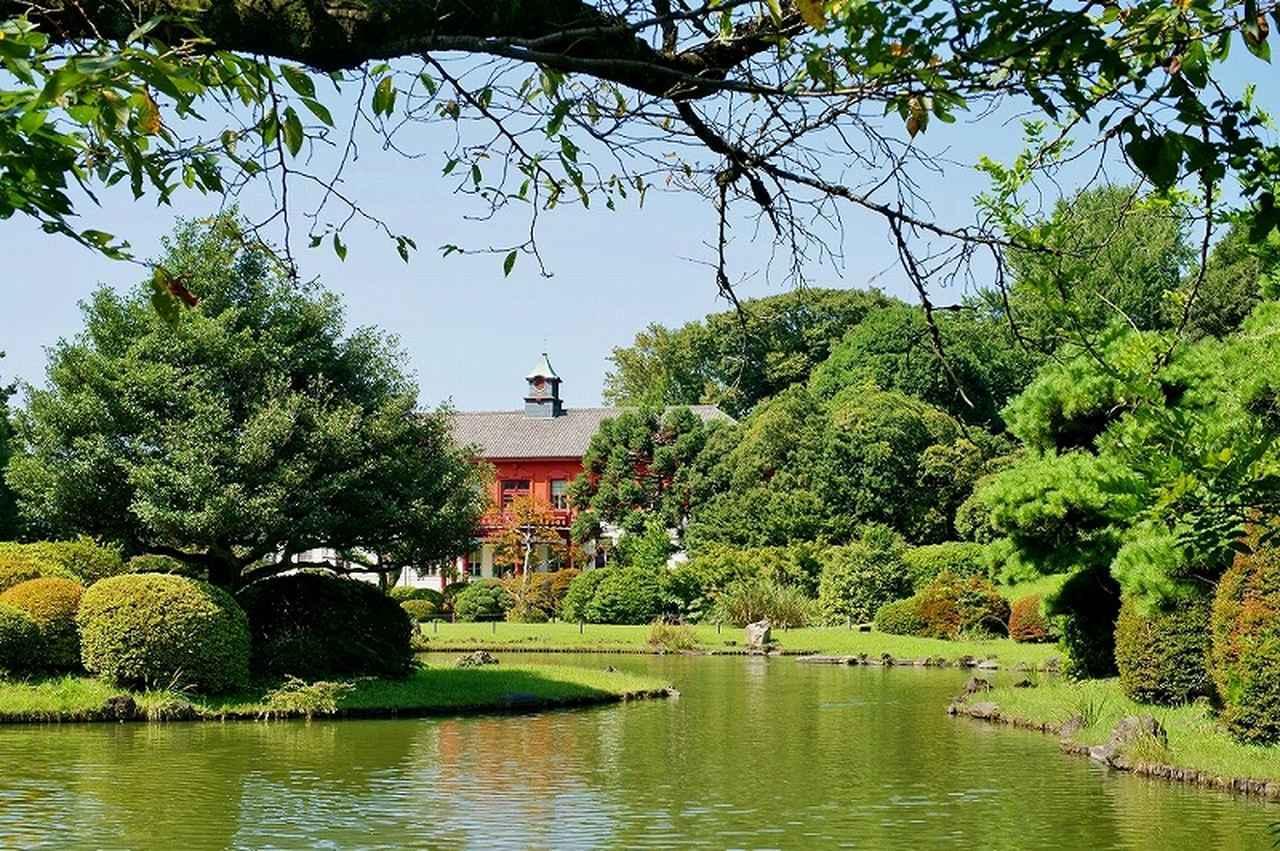 画像: 小石川植物園。庭園をのんびり散策してゆったりとした時間を