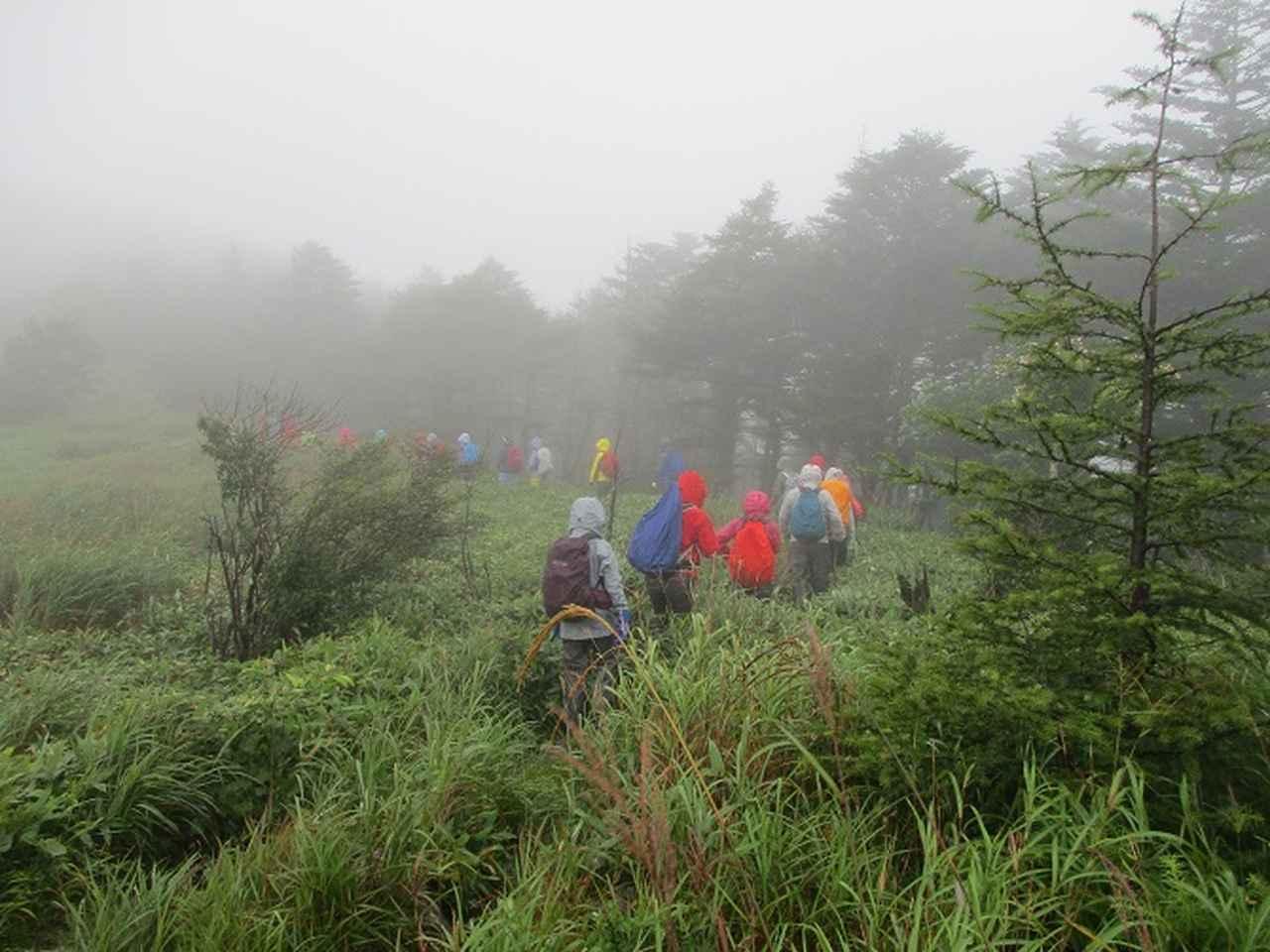 画像1: 8月28日に山旅会 鷲ヶ峰 ツアーに行ってきました!