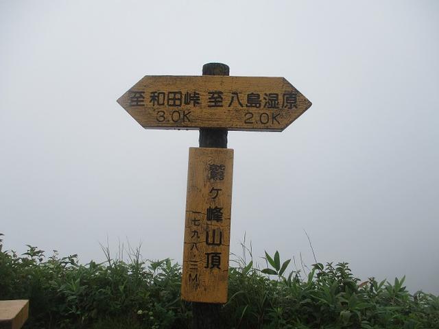 画像6: 8月28日に山旅会 鷲ヶ峰 ツアーに行ってきました!