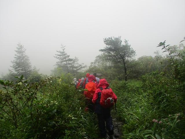 画像7: 8月28日に山旅会 鷲ヶ峰 ツアーに行ってきました!