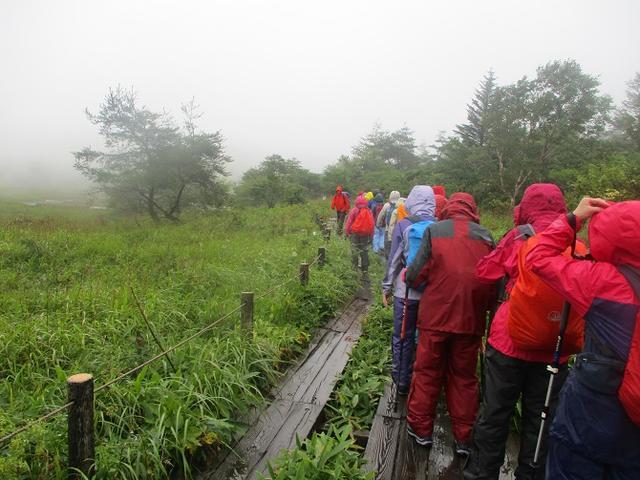 画像11: 8月28日に山旅会 鷲ヶ峰 ツアーに行ってきました!
