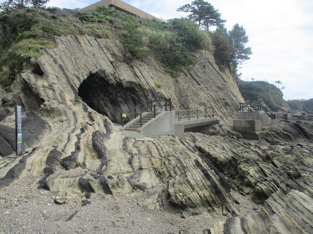 画像5: 来年夏のツアーの企画素材を探して三浦半島の荒崎海岸を歩いてみました!