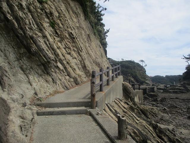 画像6: 来年夏のツアーの企画素材を探して三浦半島の荒崎海岸を歩いてみました!