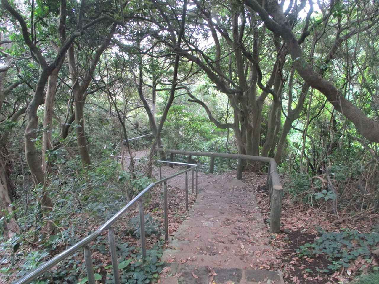 画像4: 来年の夏の企画素材を探して 三浦半島の南端・城ヶ島を歩いてみました!