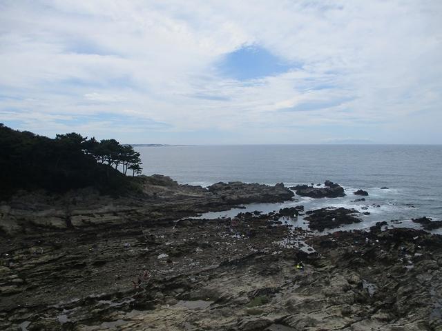 画像4: 来年夏のツアーの企画素材を探して三浦半島の荒崎海岸を歩いてみました!