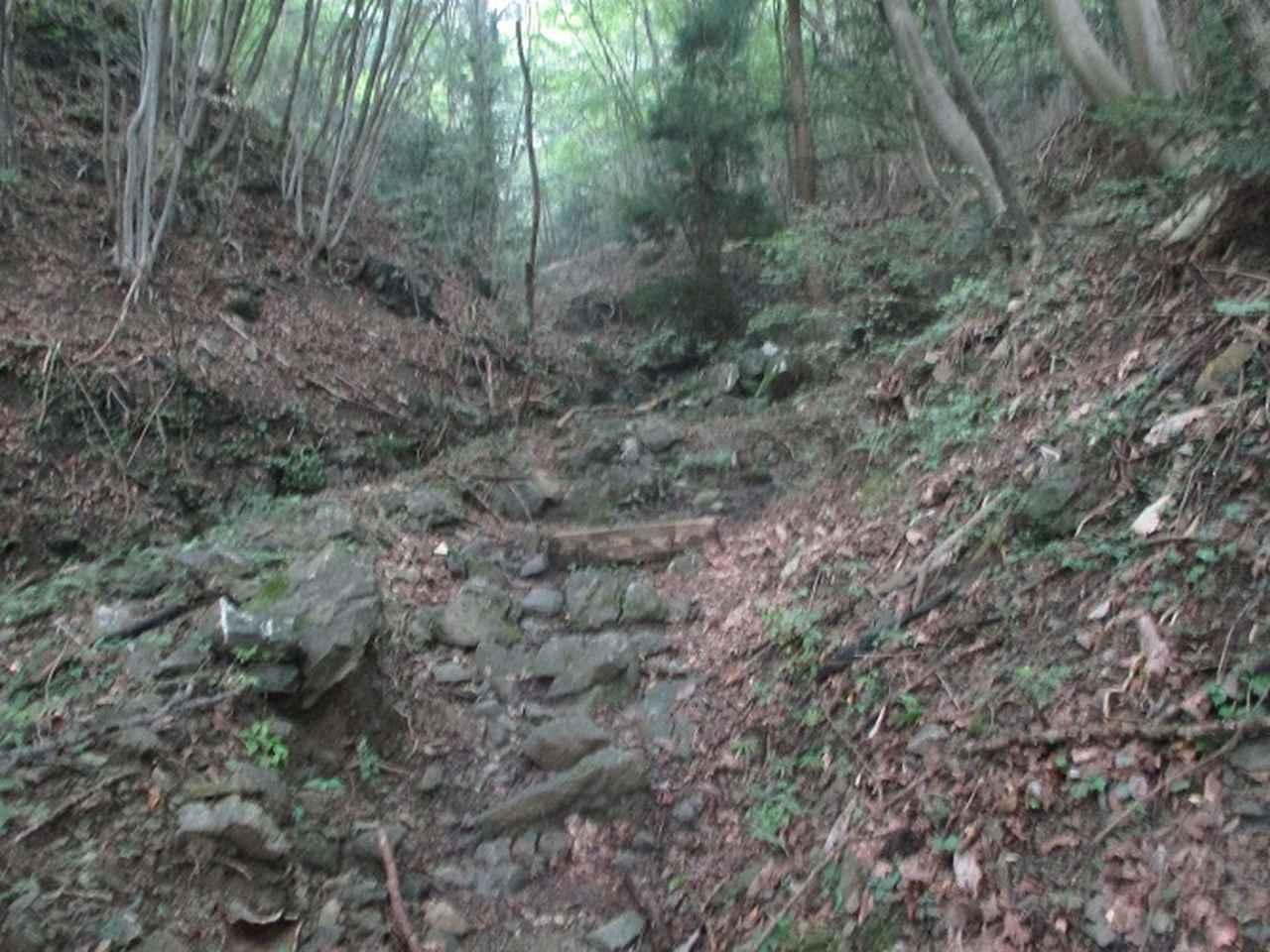 画像5: 9月の山旅会現地集合ツアー 「寺坂棚田から日向山」 の直前下見の報告です!