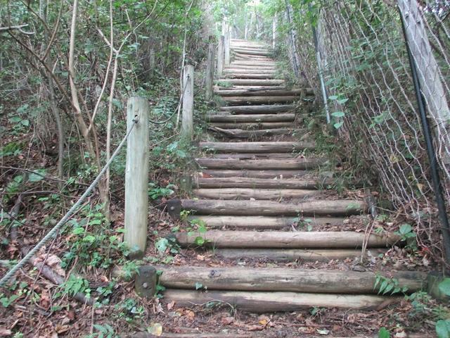 画像7: 9月の山旅会現地集合ツアー 「寺坂棚田から日向山」 の直前下見の報告です!