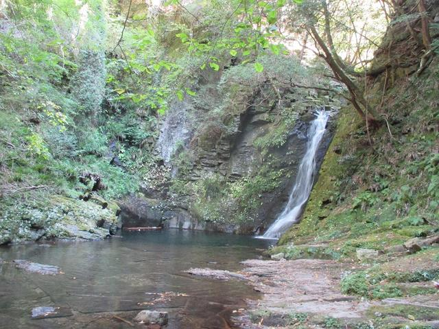 画像2: 10月の山旅会 「大台ヶ原」 ツアーのご案内です!