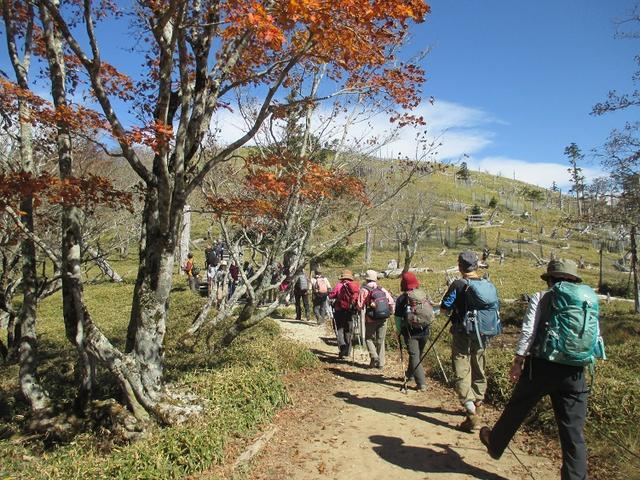 画像9: 10月の山旅会 「大台ヶ原」 ツアーのご案内です!