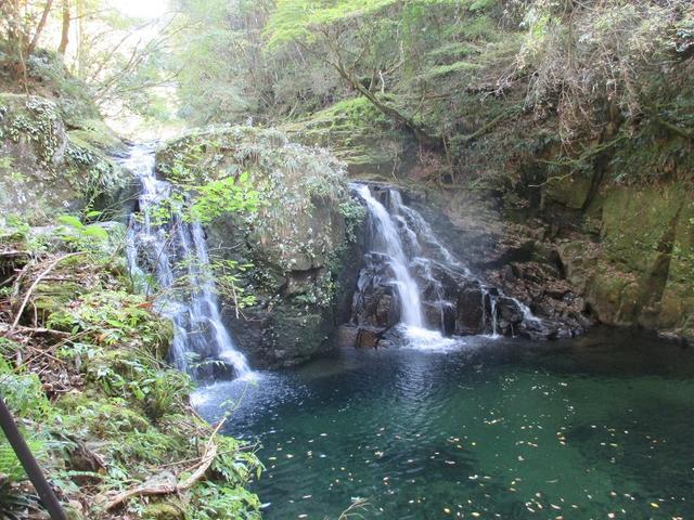 画像3: 10月の山旅会 「大台ヶ原」 ツアーのご案内です!