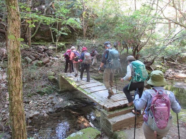 画像1: 10月の山旅会 「大台ヶ原」 ツアーのご案内です!