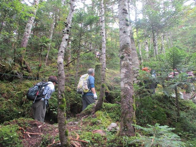 画像4: 先日9月5日に山旅会 「北横岳」 ツアーにいってきました!