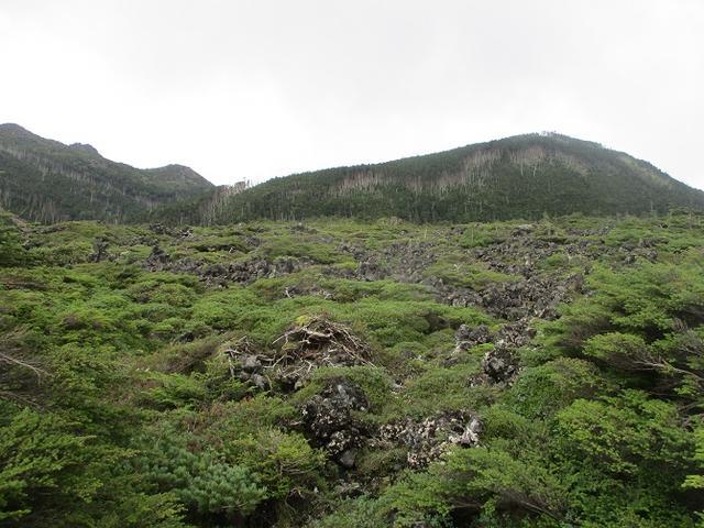 画像3: 先日9月5日に山旅会 「北横岳」 ツアーにいってきました!
