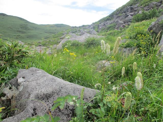 画像9: 来年夏の企画素材を探して鳥海山に行ってきました!